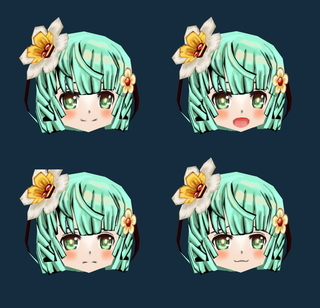 face_vly.jpg